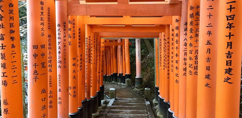 Torii gates at the Fushimi Inari Shrine