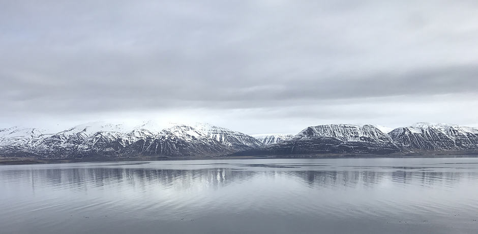 The scenic drive from Akureyri to Deplar Farm takes about one-and-a-half hours.