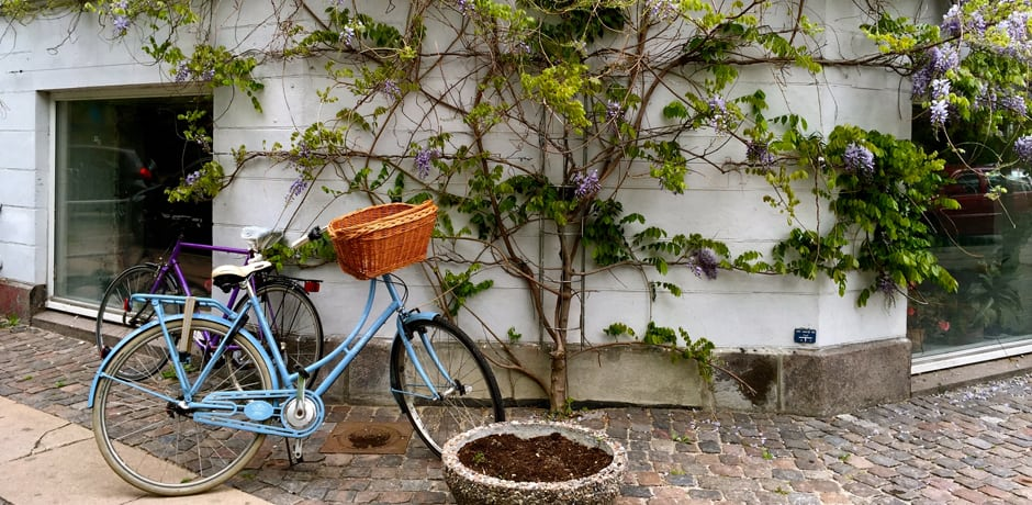 Copenhagen's fashionably scruffy Norreborro district is a hub for restaurants and independent shops