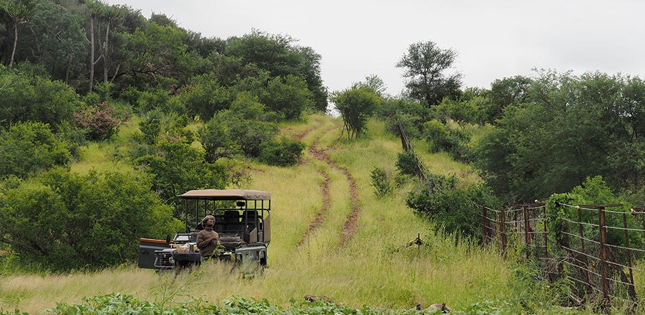 Enjoying a light snack next to the border of Mozambique in the Singita Concession at Kruger National Park