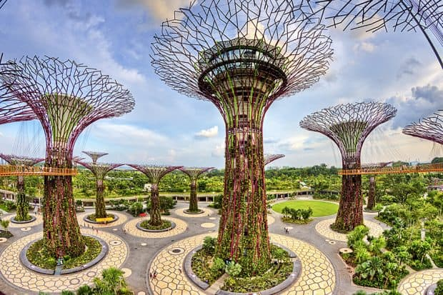Courtesy Gardens by the Bay