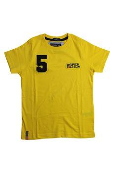 T-shirt ASPEN POLO CLUB   8   M0031GI