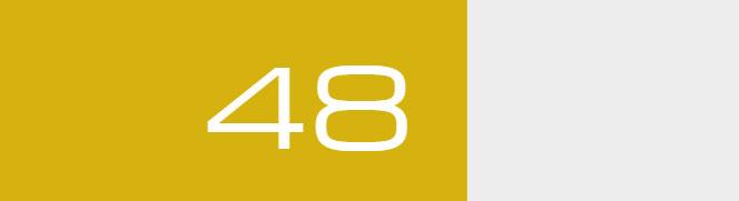 Overall Score - 48