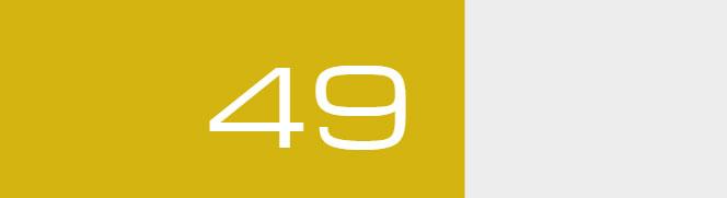 Overall Score - 49