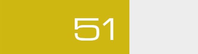 Overall Score - 51