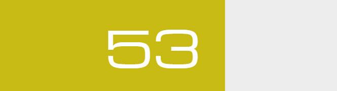 Overall Score - 53