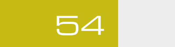 Overall Score - 54