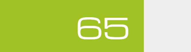 Overall Score - 65