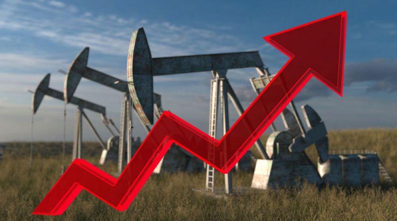 Oil rises higher
