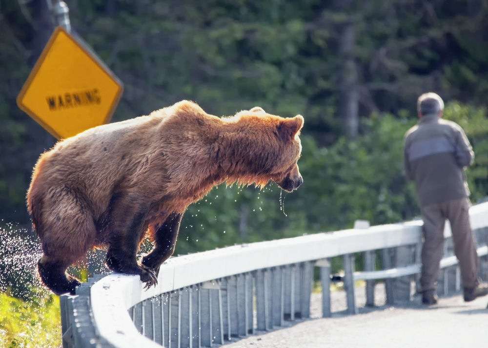 Are we nearing a bear market? ETFs to lean on