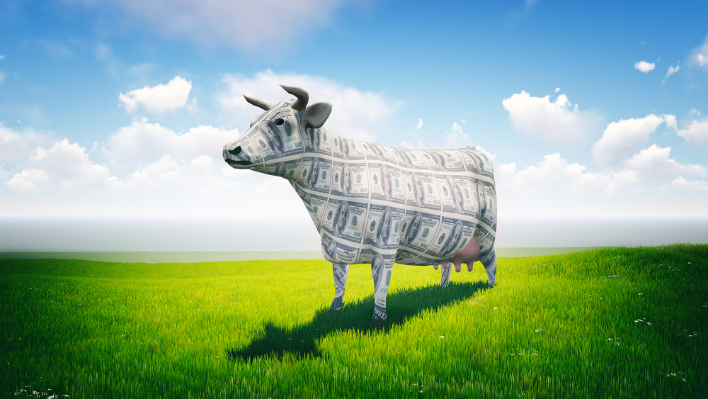 Five cash cows that will keep delivering top yields