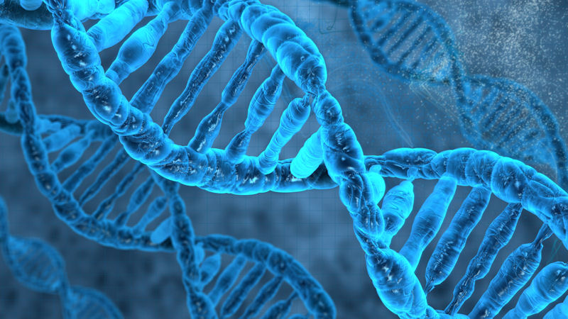 Applied DNA Sciences (APDN) Stock: How Does it Score?