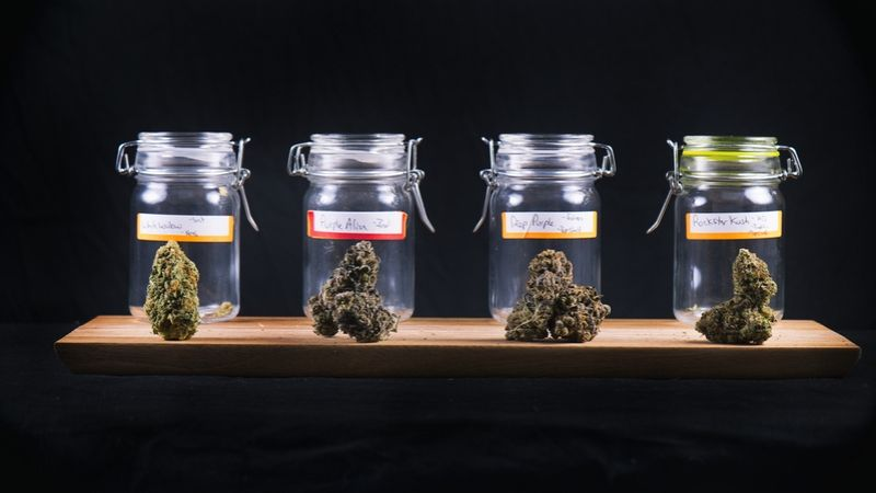 How Does Aurora Cannabis Inc (ACB) Stock Compare to its Peers?