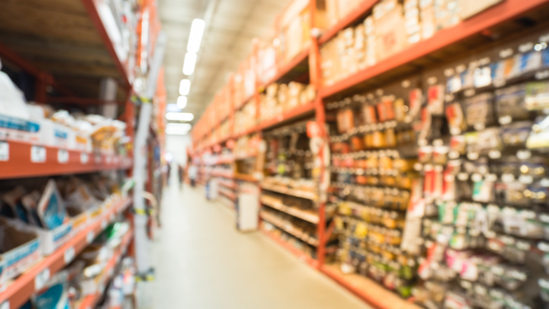 Is Home Depot Inc (HD) a Winner in the Home Improvement Retail Industry?