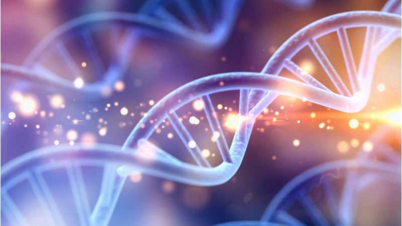 Is Crispr Therapeutics AG (CRSP) Stock About to Get Hot Monday?