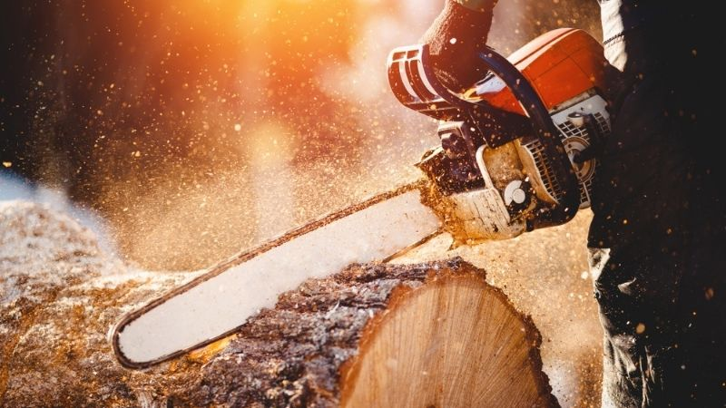 Brown Is The New Gold: Two Stocks and One ETF to Play the Boom in Lumber Prices