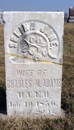 ADAMS, SELINA JANE - Adair County, Iowa | SELINA JANE ADAMS
