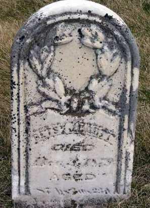 DARTT, BETSY J. - Adair County, Iowa | BETSY J. DARTT