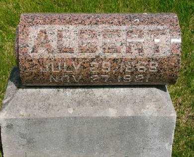 VAN VLEET, ALBERT - Adair County, Iowa | ALBERT VAN VLEET