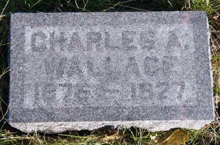 WALLACE, CHARLES A. - Adair County, Iowa   CHARLES A. WALLACE