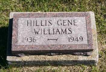 WILLIAMS, HILLIS GENE - Adair County, Iowa | HILLIS GENE WILLIAMS