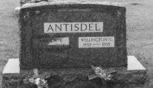 ANTISDEL, WELLINGTON LESLIE - Adams County, Iowa | WELLINGTON LESLIE ANTISDEL
