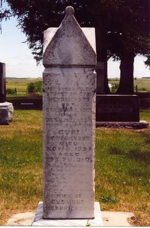 HENDRICKSON, GURI (JULIA) - Adams County, Iowa | GURI (JULIA) HENDRICKSON