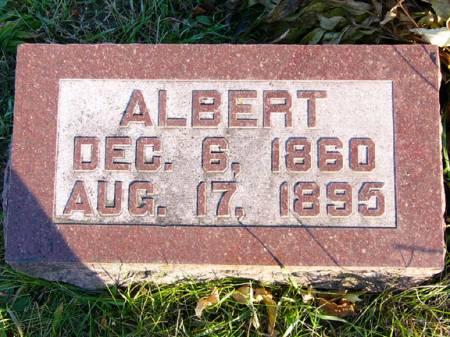 TAYLOR, ALBERT - Adams County, Iowa | ALBERT TAYLOR