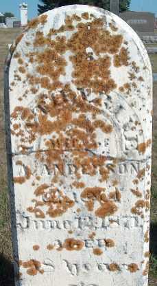 ANDERSON, CATHARINE - Allamakee County, Iowa | CATHARINE ANDERSON