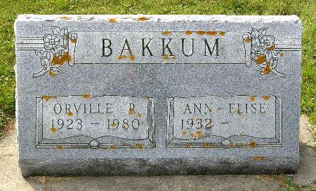 BAKKUM, ORVILLE R. - Allamakee County, Iowa | ORVILLE R. BAKKUM