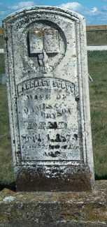 BRYSON, MARGARET SCOTT - Allamakee County, Iowa | MARGARET SCOTT BRYSON