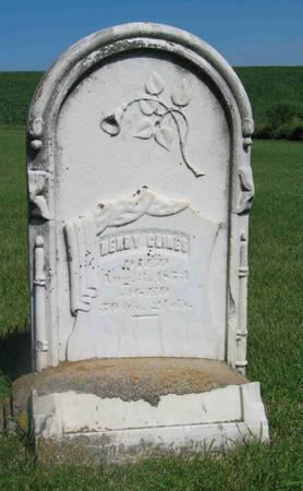 GLINES, HENRY - Allamakee County, Iowa | HENRY GLINES