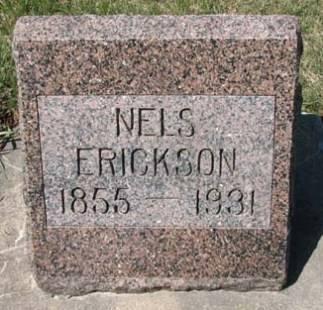 ERICKSON, NELS - Allamakee County, Iowa | NELS ERICKSON