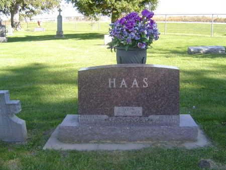 HAAS, JOHN - Allamakee County, Iowa | JOHN HAAS
