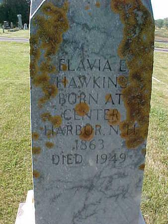 HAWKINS, FLAVIA  E. - Allamakee County, Iowa | FLAVIA  E. HAWKINS