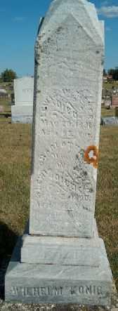 MEYER, LEWIS W. - Allamakee County, Iowa   LEWIS W. MEYER