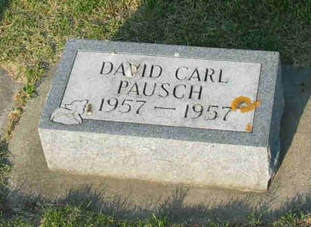 PAUSCH, DAVID CARL - Allamakee County, Iowa | DAVID CARL PAUSCH