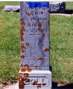 ZOLL, JOSEPH - Allamakee County, Iowa | JOSEPH ZOLL