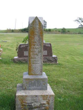 ADAMS, LESTER - Appanoose County, Iowa | LESTER ADAMS
