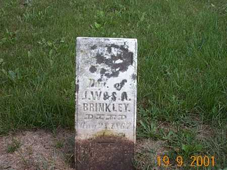 BRINKLEY, DAU - Appanoose County, Iowa | DAU BRINKLEY
