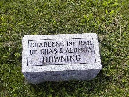 DOWNING, CHARLENE - Appanoose County, Iowa | CHARLENE DOWNING