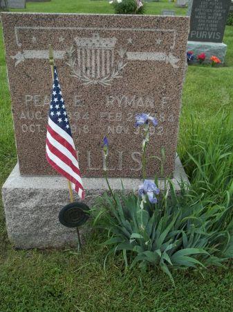 GILLIS, PEARL E. - Appanoose County, Iowa | PEARL E. GILLIS