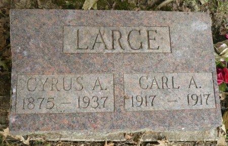 LARGE, CARL A. - Appanoose County, Iowa | CARL A. LARGE