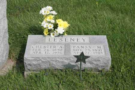 LESENEY, PANSY - Appanoose County, Iowa | PANSY LESENEY