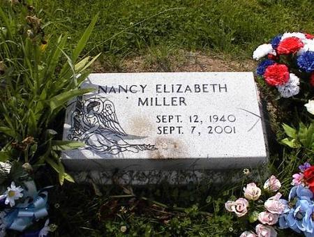 MILLER, NANCY ELIZABETH SCOTT JOHNSON - Appanoose County, Iowa | NANCY ELIZABETH SCOTT JOHNSON MILLER
