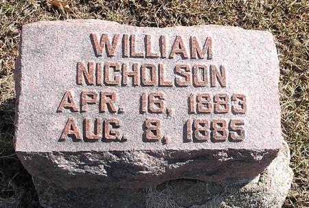 NICHOLSON, WILLIAM - Appanoose County, Iowa   WILLIAM NICHOLSON