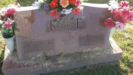 RICE, ANDREW - Appanoose County, Iowa   ANDREW RICE