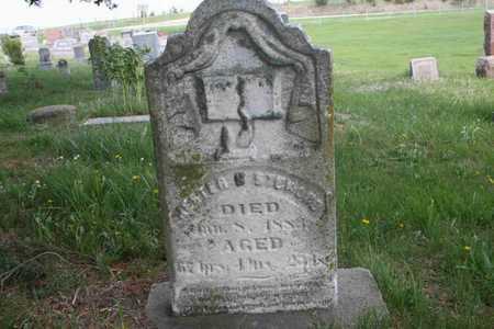 STEWARD, HESTER - Appanoose County, Iowa | HESTER STEWARD