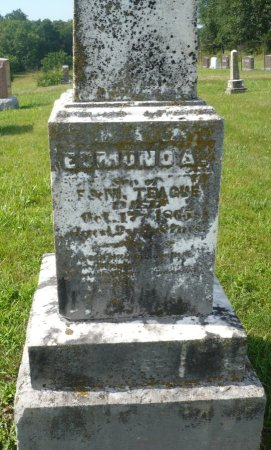 TEAGUE, EDMUND A. - Appanoose County, Iowa | EDMUND A. TEAGUE