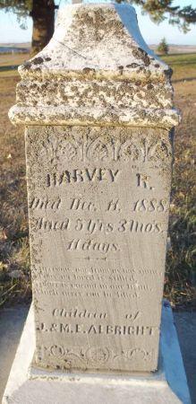 ALBRIGHT, HARVEY R. - Audubon County, Iowa | HARVEY R. ALBRIGHT